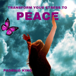 Set of 5 Calls with Padraig King offering you guidance, activities and visualisations to transform your stresses to peace of mind, positivity and to develop the resilience and motivation to live life to the fullest. Be Calm, Relaxed, Happy and Fulfilled.