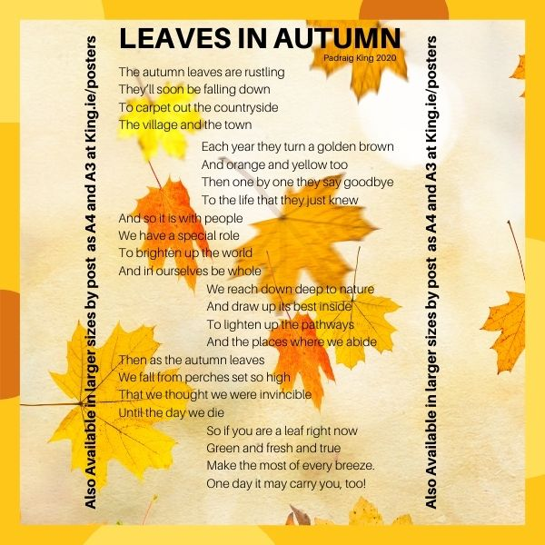 Leaves in Autumn – a FREE poem by Padraig King